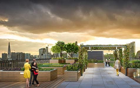 Roof Terrace - Essential Living