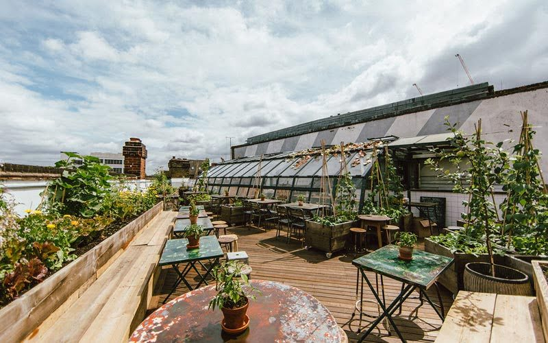 Best rooftop bars - The Culpeper