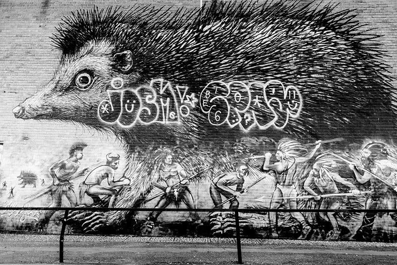 Best East London Street Art - ROA Hedgehog - Essential Living