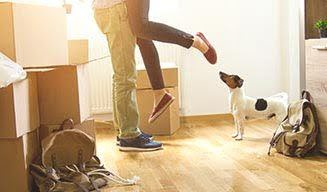 Renting as the Norm in Europe - Essential Living
