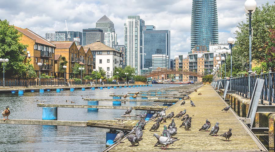 Isle of Dogs, one of the best places to live in East London