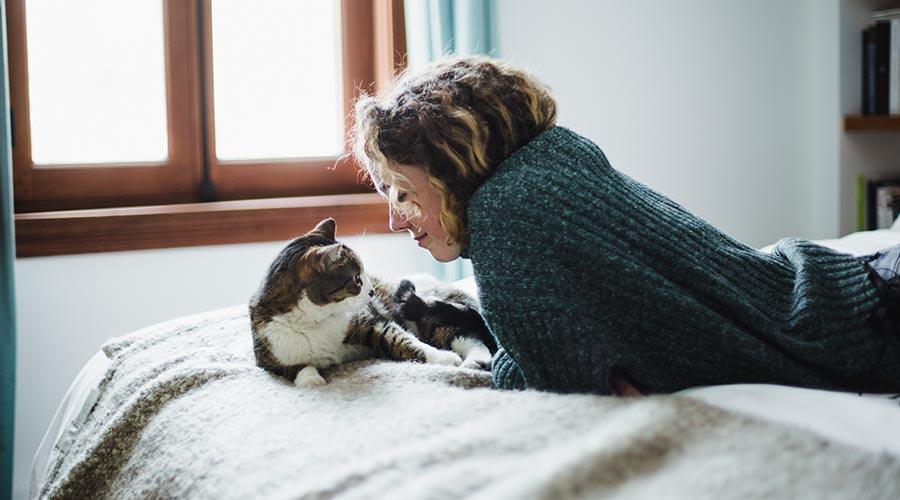 cat on the bed with its owner in a pet friendly flat to rent