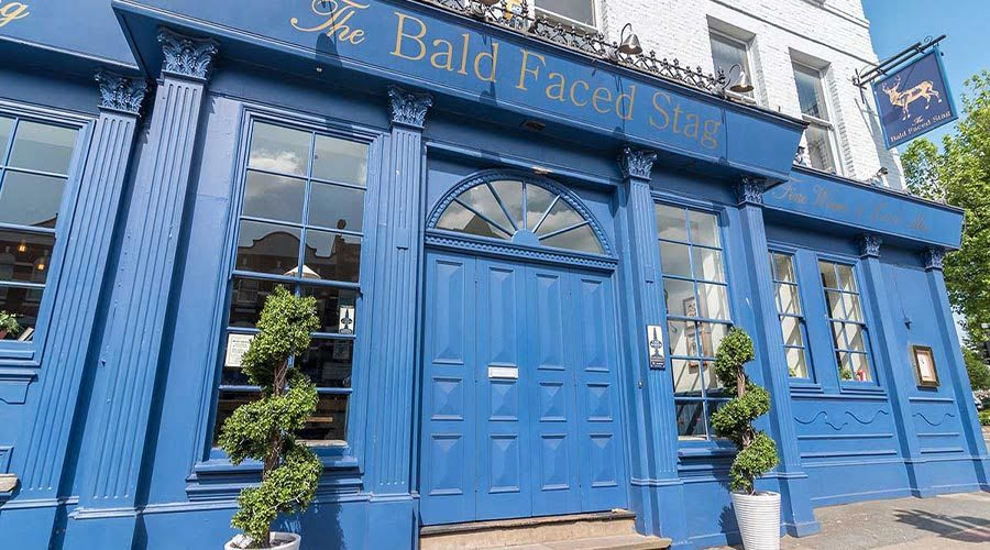 The Bald Faced Stag, Dog Friendly Pub in North London