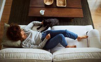 Rented Properties That Allow Pets